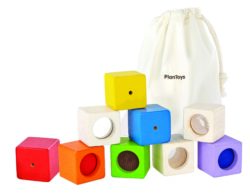 Plan Toys Activity Blocks (9 Sensory Bricks)