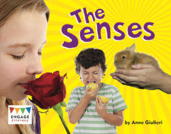 The Senses (Engage Literacy Purple)