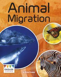Animal Migration (Engage Literacy Grey)