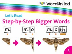 Let's Read - Step-by-Step Bigger Words