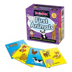 BrainBox First Animals (Game)