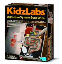 4M KidzLabs Digestive System Buzz Wire