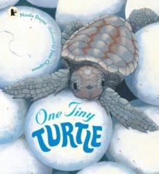 One Tiny Turtle (Walker Nature Storybooks - Nicola Davies)
