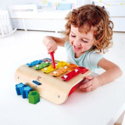 Hape My First Xylophone & Piano (Musical Sound Eco Toy)